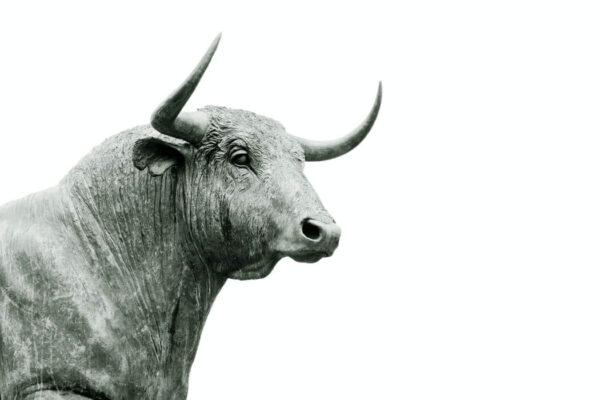Что такое бычий рынок